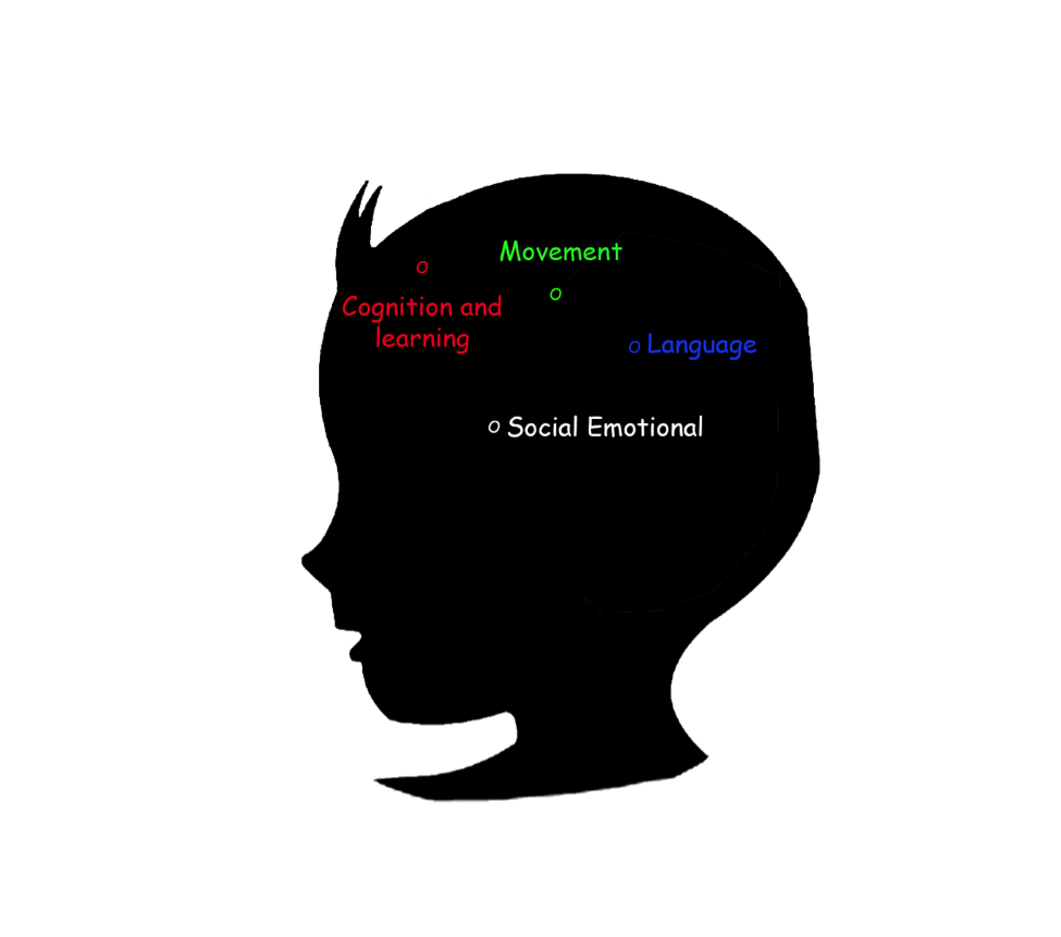 Baby brain development stage 6-12 months
