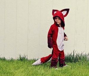 35 Fox