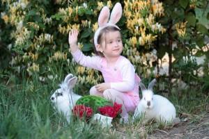 40 Rabbit